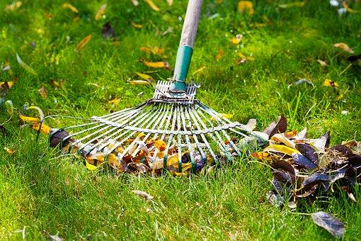 Fall Is A Crucial Time for Lawn Care