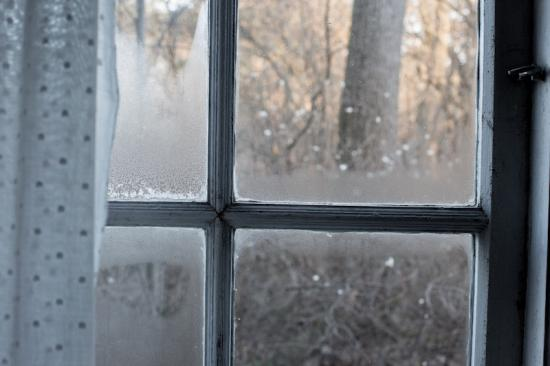 Clearing the Fog: Knowing the Signs of Window Seal Failure